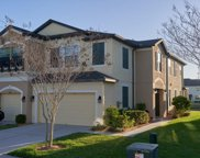 11641 Crowned Sparrow Lane, Tampa image