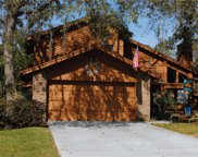 248 Hunters Point Trail, Longwood image