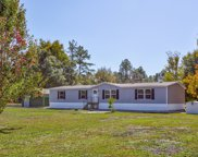 6377 CO RD 119, Bryceville image