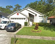 3036 Catherine Wheel Court, Orlando image