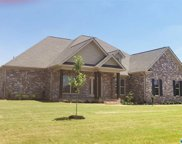 17472 Spring View Drive, Athens image