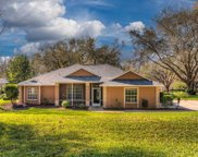 11148 Haskell Drive, Clermont image