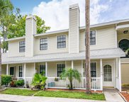 12580 Castle Hill Drive, Tampa image
