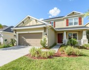 8827 Tropical Palm Drive, Tampa image