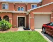 2524 Sand Dollar Lane, Clearwater image
