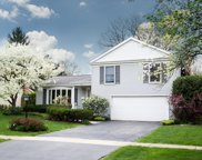 211 White Fawn Trail, Downers Grove image