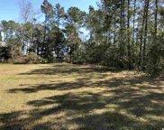 132 Swamp Fox Ln., Georgetown image