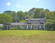 389 Old Cedar Loop, Pawleys Island image