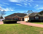 9219 Lakeview Drive, Foley image