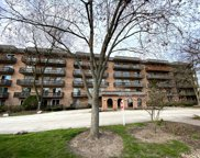 512 Redondo Drive Unit #412, Downers Grove image