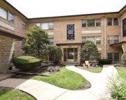 4850 N Linder Avenue Unit #2B, Chicago image