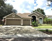 10737 Moss Island Drive, Riverview image