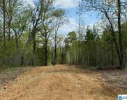 Hwy 11 Unit Tract 6, Springville image