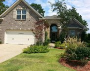 309 White Swan Court, Wilmington image