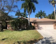 805 Willow Springs Ct, Naples image