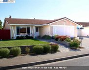 32412 Woodland Drive, Union City image