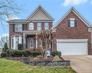 12835 Cadgwith Cove  Drive, Huntersville image