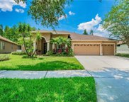 4713 Mirabella Place, Lutz image
