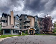 31719 Rocky Village Drive Unit 223, Evergreen image