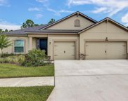 13237 Baby Belle Drive, Riverview image