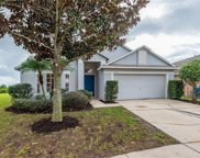 11126 Rodeo Lane, Riverview image