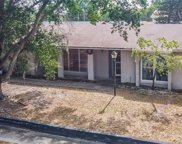 12509 Limpet Drive, Tampa image
