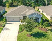 671 Elk River Drive, Ormond Beach image
