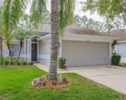 18119 Canal Pointe Street, Tampa image
