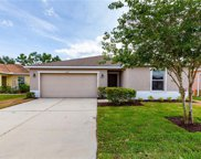 11217 Running Pine Drive, Riverview image