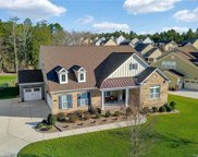 320  Monteray Oaks Circle, Fort Mill image