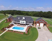 2310 County Road 1740, Holly Pond image