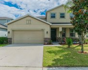 12304 Holmwood Greens Place, Riverview image