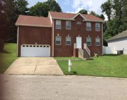 1212 Orchard Mountain Ct, Antioch image