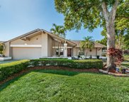 2900 Pinewood Run, Palm Harbor image