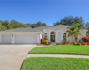 4812 Water Lark Way, Valrico image
