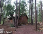 2478 Sunflower Drive, Pinetop image
