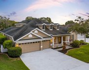 22925 Collridge Drive, Land O' Lakes image