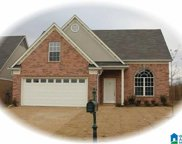 1008 Shelby Forest Trace, Chelsea image
