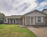 4704 Moss Rose Drive, Fort Worth image