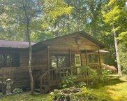 201 Dryman Fork Woods Rd, Otto image