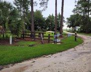 Pine Meadows Golf Course Road, Eustis image