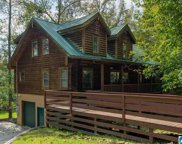 114 Pump House Road, Odenville image