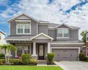 134 Philippe Grand Court, Safety Harbor image