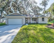 1627 Queen Palm Drive, Edgewater image