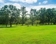 32152 Jack Russell Court, Dade City image