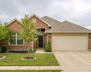 1408 Red Drive, Little Elm image