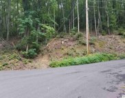 lot1 Upper Alpine Way, Gatlinburg image