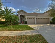 8323 Old Town Drive, Tampa image