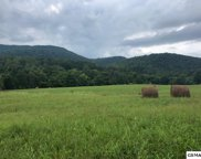643 Thomas Loop Rd, Sevierville image