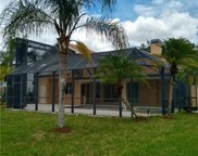 11433 Night Heron Dr, Naples image